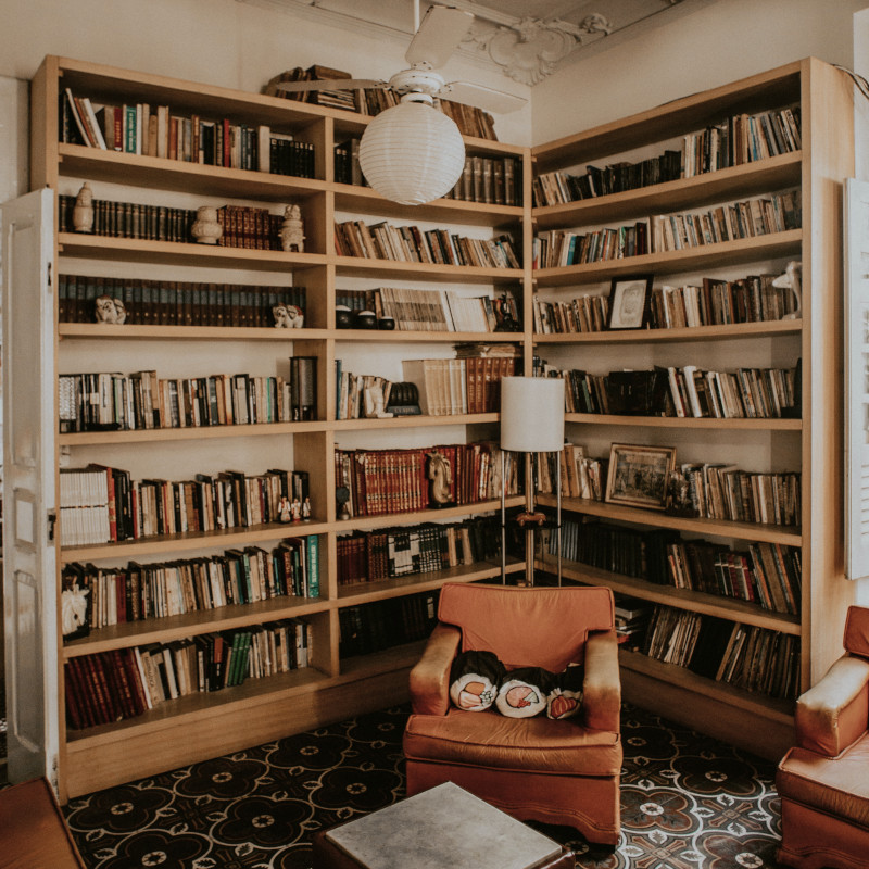 A Bookshelf filled with books